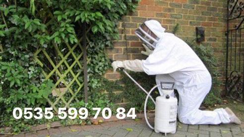 menemen böcek haşere ilaçlama servisi şirketi